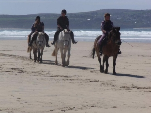 Cornish Riding Holidays